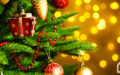 Christmas Trees: are Fake or Real better for the Planet?